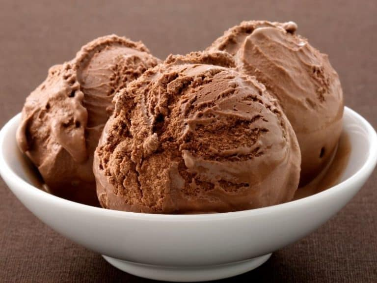 Can Dogs Eat Chocolate Ice Cream Or Not?